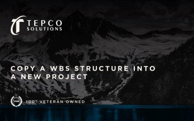 Copy a WBS Structure into a New Project