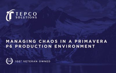 Managing Chaos in a Primavera P6 Production Environment