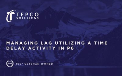 Managing Lag Utilizing a Time Delay Activity in P6