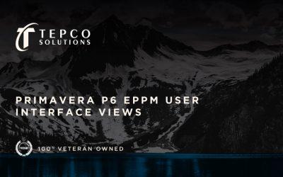 Primavera P6 EPPM User Interface Views