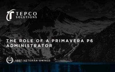 The Role of a Primavera P6 Administrator
